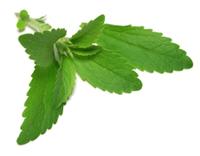 stevia - tips-om af te vallen