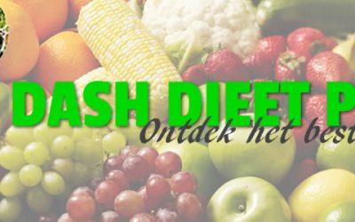 Afvallen met Het Dash Dieet Plan